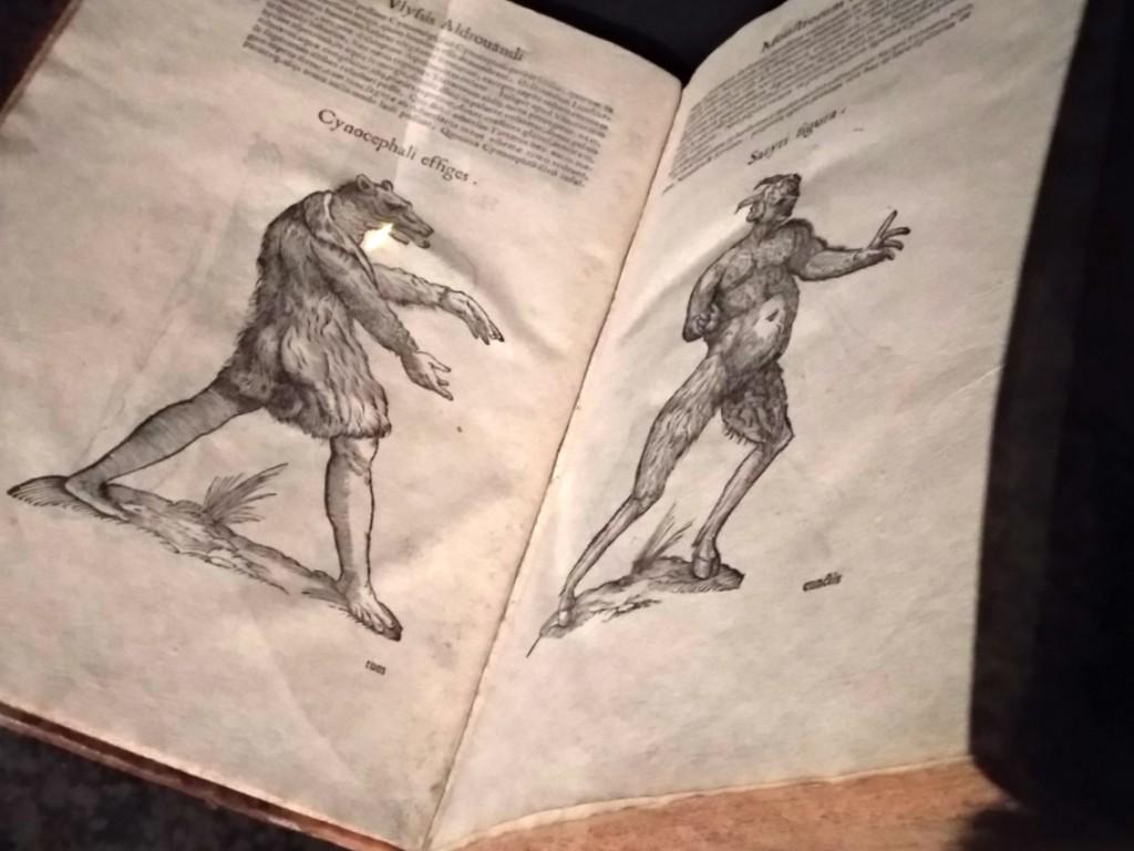 ouvrage sur les monstres
